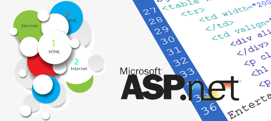 ASP Dot Net Development