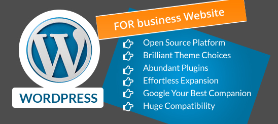 WordPress Website for Business