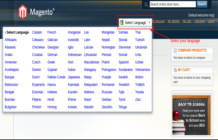 Client Side – Language Translate Dropdown (All Language)