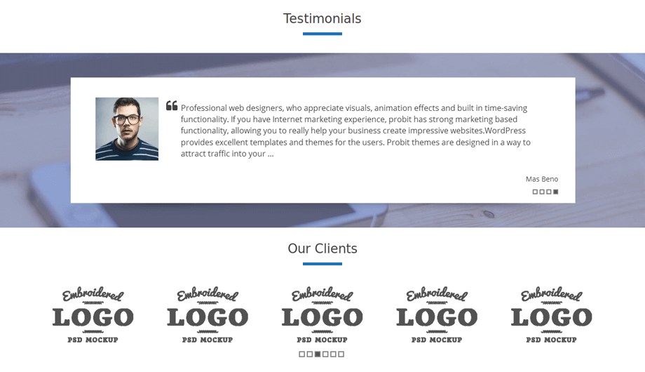 Probit Testimonial and Our Clients