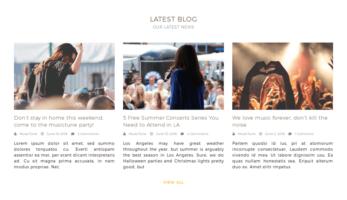 MusicTune WordPress Theme – Latest Blogs