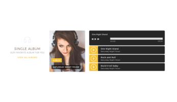 MusicTune WordPress Theme – Single Albums