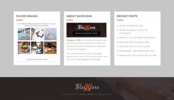Footer Widget Section – Bloggers Premium Blog Theme