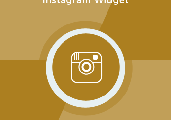 Instagram Widget - Free Magento 2 Extension